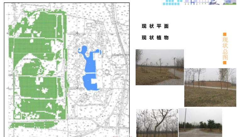 [北京]怡生园国际会议中心养生林景观方案文本(生态健康养生)_6