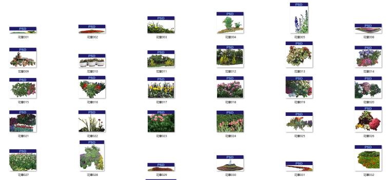 园林、建筑植物配景素材之花草psd素材