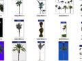 园林设计植物素材之棕榈及椰树psd素材