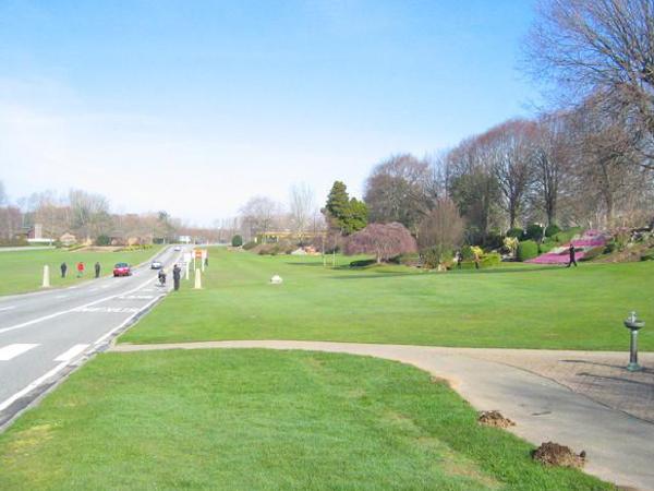 城市道路绿化及道路绿地设计PPT(57页)