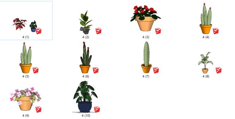 盆栽景观植物su模型(31-40)
