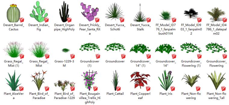 68套3D景观花草植物su模型-草本植物