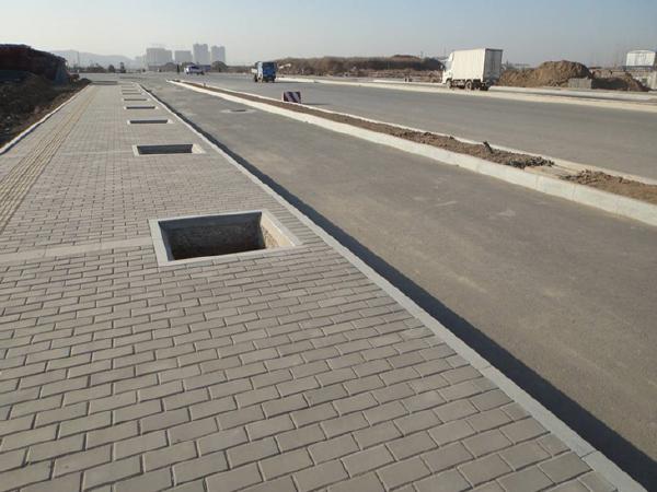 市政基础设施标准化施工及常见质量通病预防