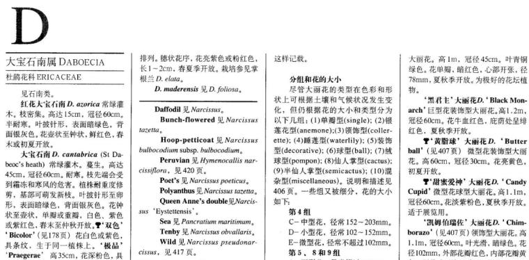 世界园林植物与花卉百科全书-植物词典-D