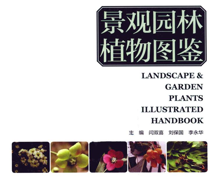 景观园林植物图鉴PDF(共591页)