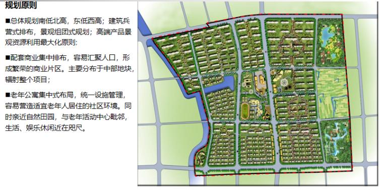 [上海]全配套养老社区规划方案文本,170页_2