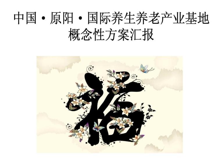 元阳养生养老项目方案汇报,38页
