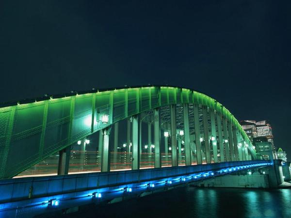 大型斜拉桥、悬索桥高塔柱施工测量(162页)