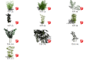 17个景观植物竹子su模型