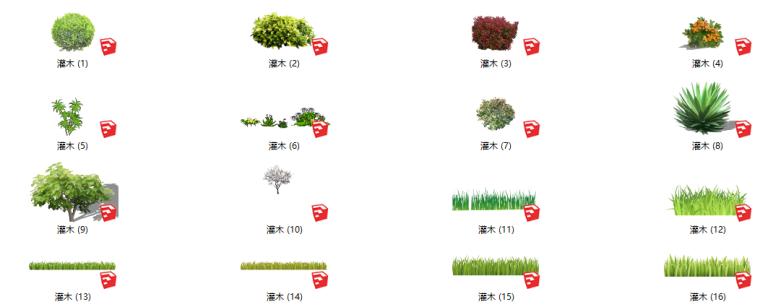 景观植物草及灌木su模型
