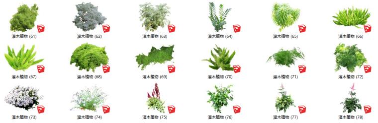 450个花卉灌木植物su模型A(61-100)