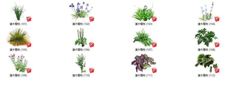 450个花卉灌木植物su模型(101-150)