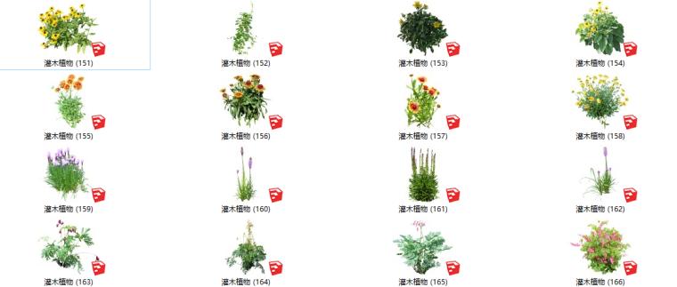 450个花卉灌木植物su模型A(151-200)