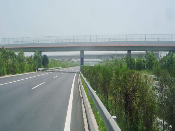 [专家论证]跨线桥工程墩柱施工方案