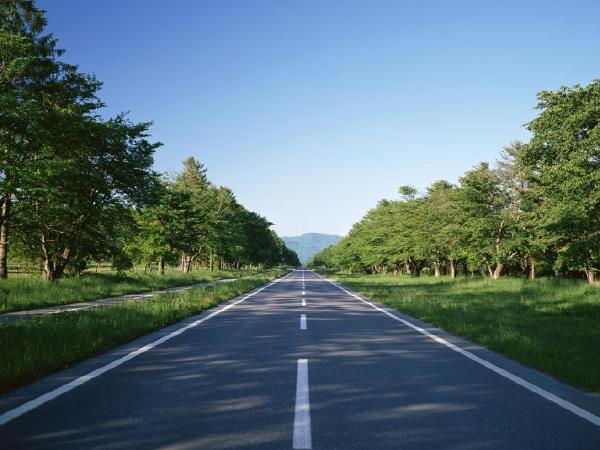 纬地道路CAD在低等级公路设计中的应用