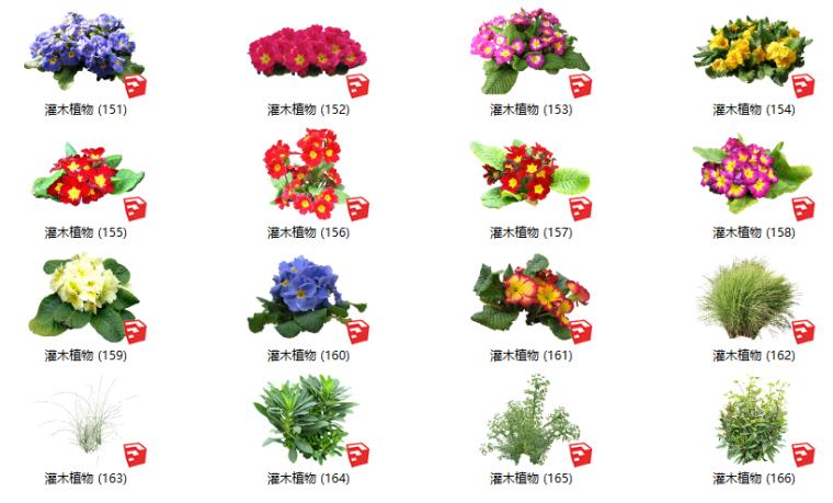 500套花卉灌木植物su模型B(151-200)