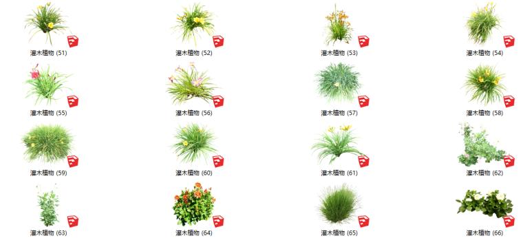 500套花卉灌木植物su模型B(51-100)