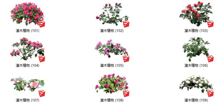 500套花卉灌木植物su模型B(101-150)