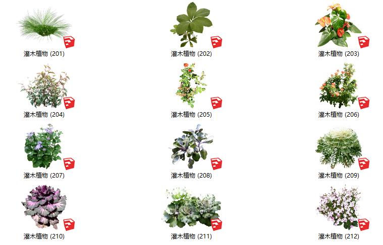 500套花卉灌木植物su模型B(201-250)