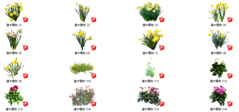 500套花卉灌木植物su模型B(1-50)