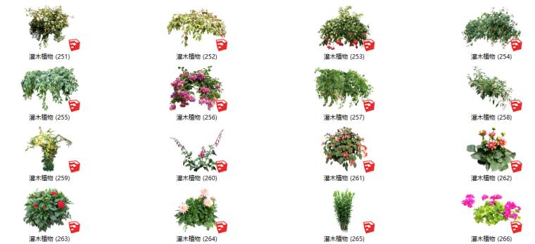 500套花卉灌木植物su模型B(251-300)
