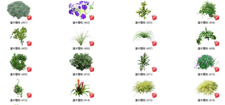 500套花卉灌木植物su模型B(401-450)