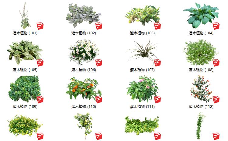 500套花卉灌木植物组件全集C(101-150)