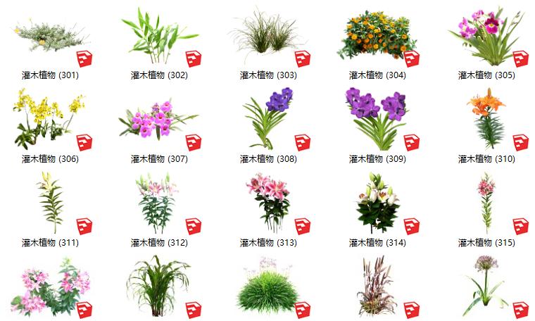 500套花卉灌木植物组件全集C(301-350)
