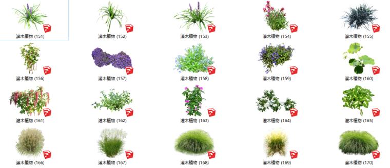 500套花卉灌木植物组件全集C(151-200)