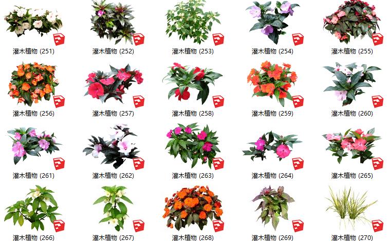 500套花卉灌木植物组件全集C(251-300)