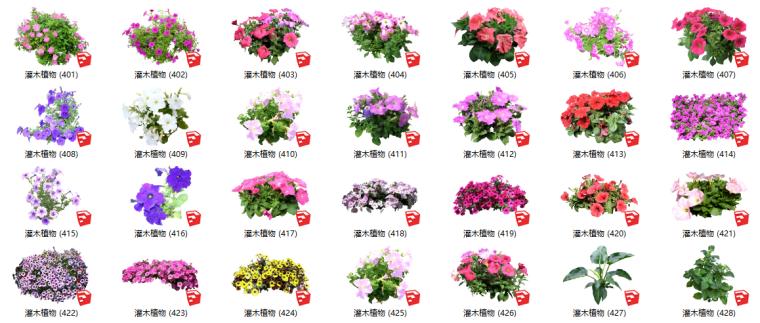 500套花卉灌木植物组件全集C(351-400)