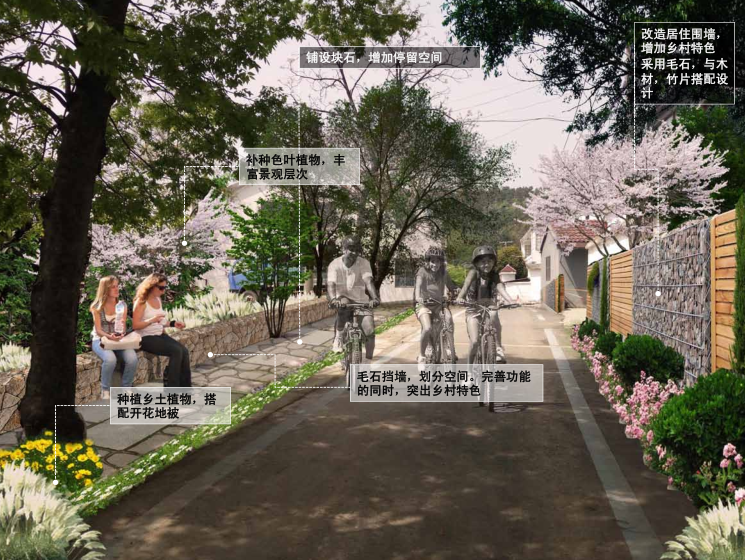 [江苏]茶林美丽乡村村庄规划方案-村庄改造