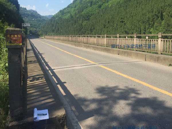 3座桥梁病害整治工程施工图设计汇报