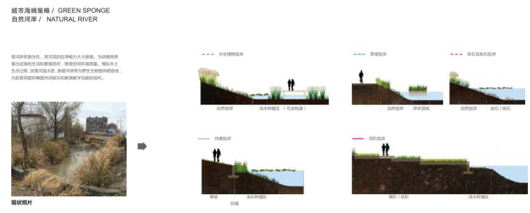 [安徽]现代曲线滨水公园方案设计文本_20