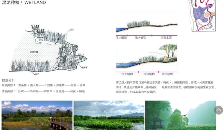 [安徽]现代曲线滨水公园方案设计文本_11
