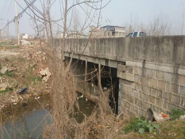 省道改建工程桥梁围堰专项施工方案