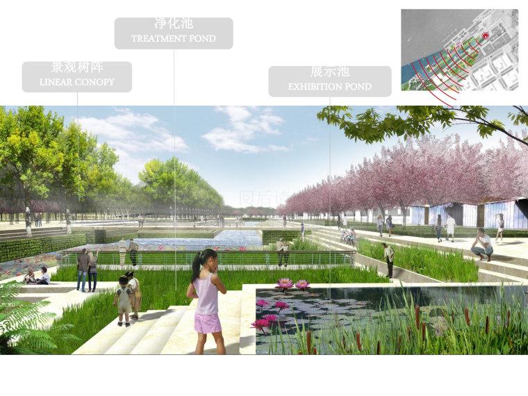 [上海]滨江休闲生态都市体验公园景观设计_1