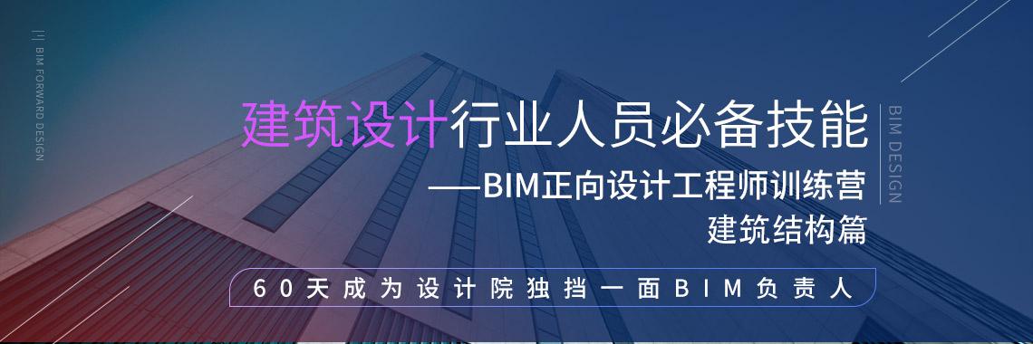 建筑设计行业人员必备技能 BIM正向设计工程师训练营--建筑结构篇 60天成为设计院独当一面BIM负责人