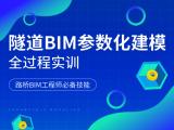 隧道BIM参数化建模全过程实训