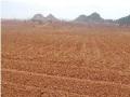 土地开发整理规划设计——土地平整工程