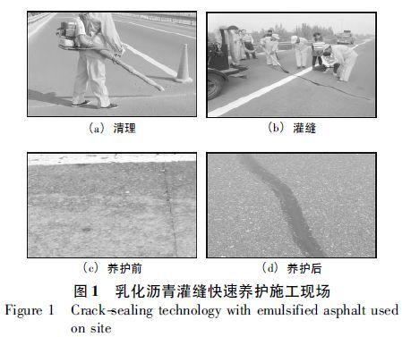 公路快速养护技术的应用研究