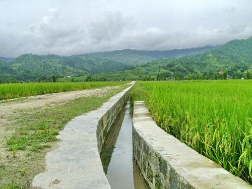 小型农田水利建设项目监理技术交底(含流程图)