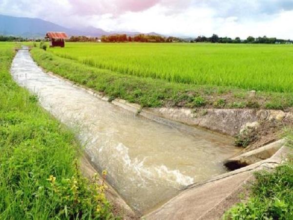 惠民项目土地整理可行性研究报告