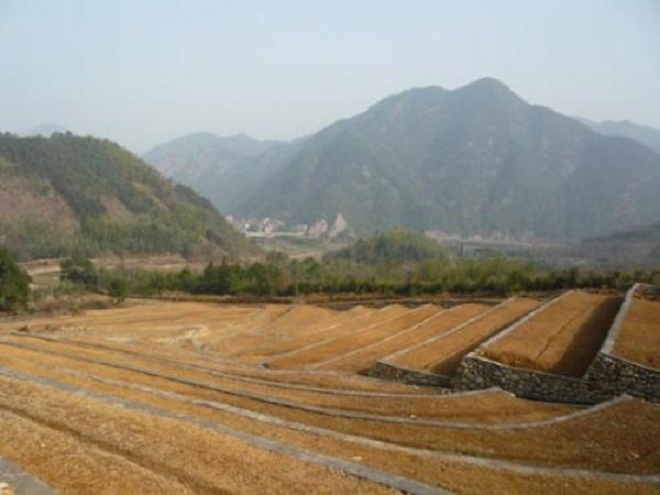 土地开发整理项目工作流程