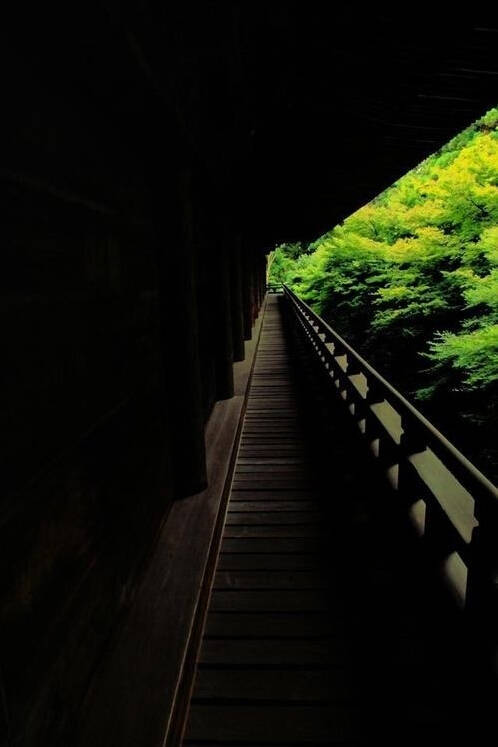 静谧的禅宗寺院_28