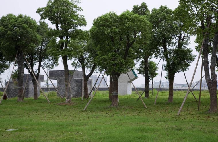 138612689141312-jinhuajianzhu-6hao-cesuo-dna