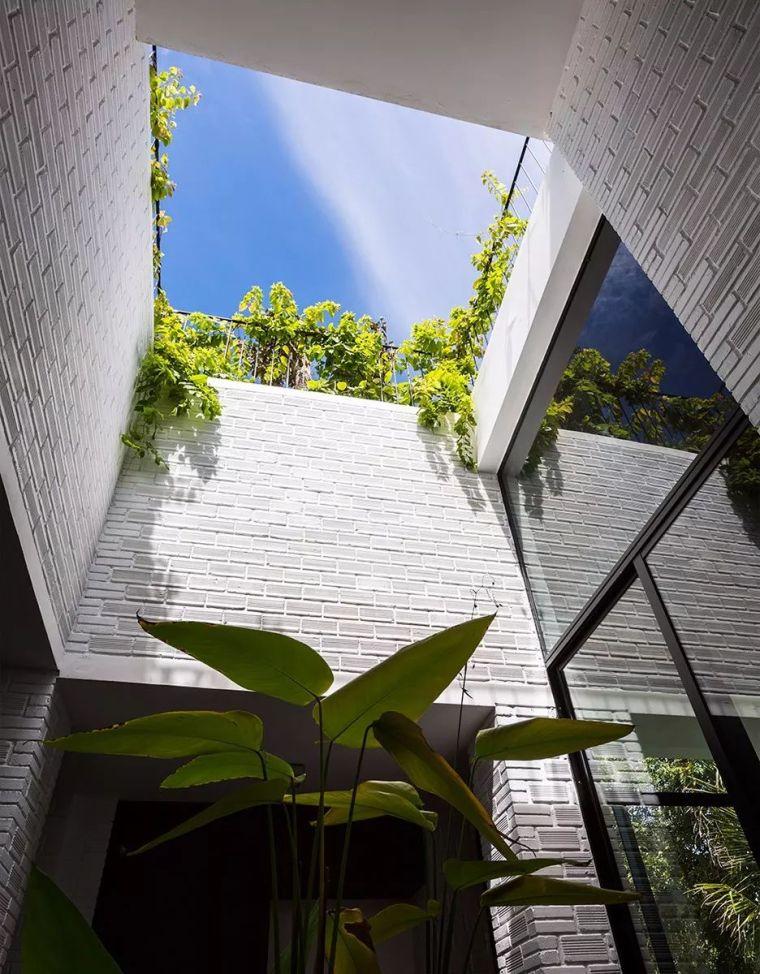 """被低估的越南""""绿色住宅"""",10个未来实践_6"""