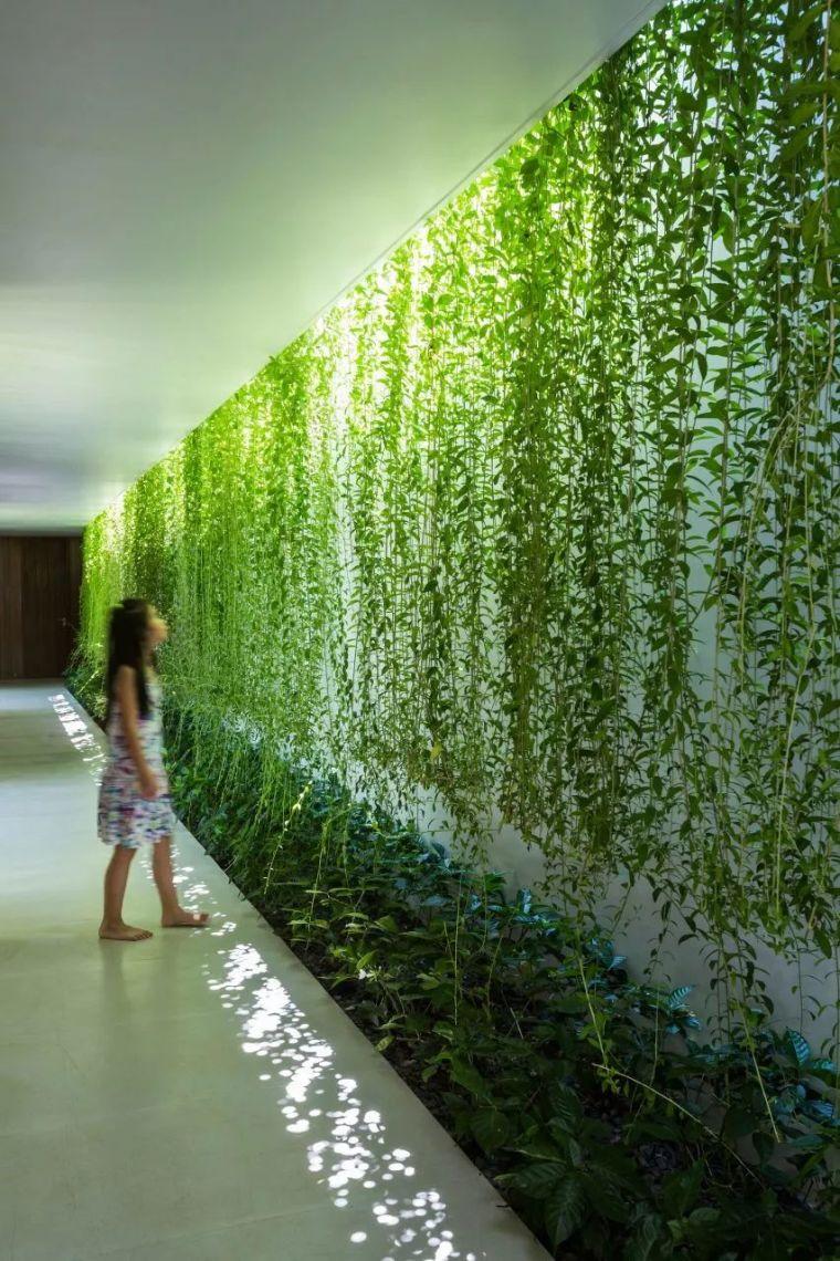 """被低估的越南""""绿色住宅"""",10个未来实践_21"""