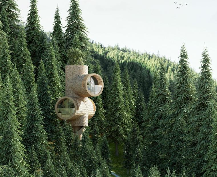 Precht工作室为Baumbau设计的截断木质树屋
