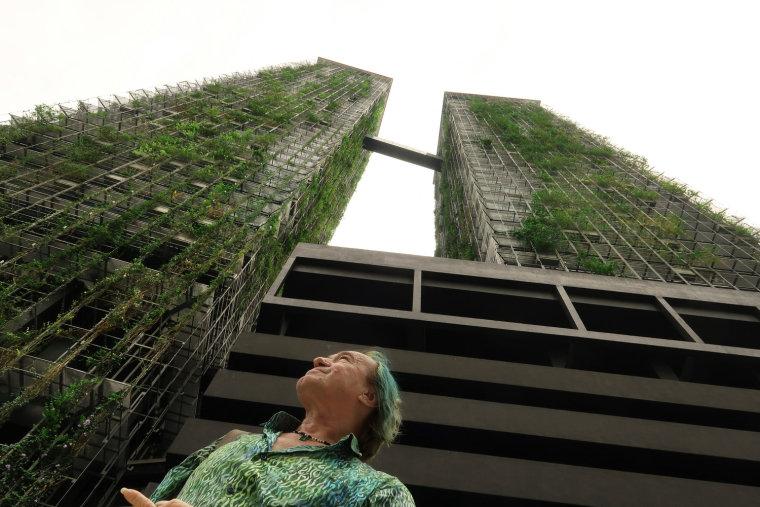 高层建筑外墙垂直绿化保温系统研究